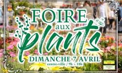Foire aux plants 2019
