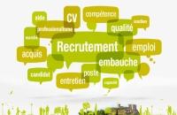 Déposer votre CV / Offres d'emploi