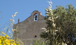 Visitez la Chapelle romane